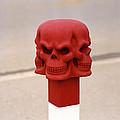 Red Skull by Shaun Higson