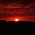 Red Sky At Night by Ray Sheley