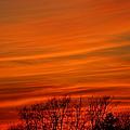 Red Sky by Jeffery L Bowers