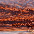 Red Sky by Michal Boubin