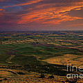 Red Sky Over The Palouse by Mike  Dawson