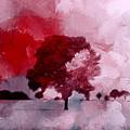 Red Sky by Steve K