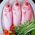 Red Snappers by Ferry Zievinger