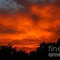 Red Sunset by Jeremy Hayden