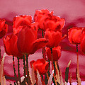 Red Tulips  by Penny Hunt