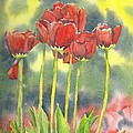 Red Tulips by Tammy Crawford