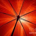 Red Umbrella by Mats Silvan