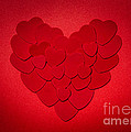 Red Valentines Day Heart by Elena Elisseeva