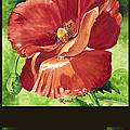 Red Vibrations Poppy by Caroline Linscott