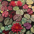 Red Water Lilies by Ruth Soller