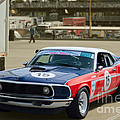 Red White And Blue Mustang by Stuart Row