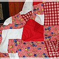 Red White And Gingham With Flowery Blocks Patchwork Quilt by Barbara Griffin