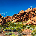 Redstone Picnic Area by Robert Bales