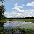 Redtail Lake At Steigerwald Natinal Wildlife Refuge by Lizbeth Bostrom