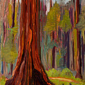 Redwood Giant by Suzanne Elliott