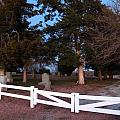 Reece Cemetary by Aaron Moore