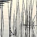 Reeds II by Stuart Gordon