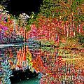 Reedy Creek Nc 3 by Earl Johnson
