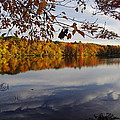 Reflected Autumn Colors by Jf Halbrooks