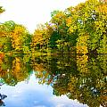 Reflected Autumn Glory by Vernis Maxwell