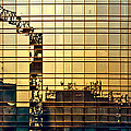 Reflected Cranes At Sunset by Roberto Pagani