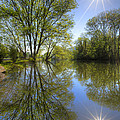 Reflected Star by Debra and Dave Vanderlaan