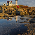 Reflecting On Nubble Lighthouse by Susan Candelario