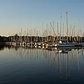 Reflecting On Yachts And Sailboats by Georgia Mizuleva
