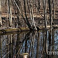 Reflecting Pool by Joseph Yarbrough
