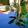 Reflection Gabezo And Trees 29478 by Jerry Sodorff