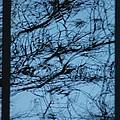 Reflection by Joseph Yarbrough