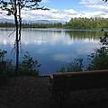 Reflection Lake Trail by Terri Pfister
