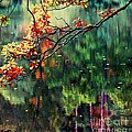 Reflection Of Autumn by Callan Art