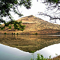 Reflection Of Butte Across From Lepage Rv Park Into Columbia River-oregon by Ruth Hager