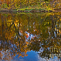 Reflection Of Fall by Tom Gari Gallery-Three-Photography