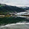 Reflection Of Mendenhall by Heather Applegate