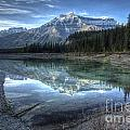 Reflection Of Mount Amery At Graveyard Flats by Brian Stamm