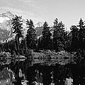 Reflection Of Trees And Mountains by Panoramic Images