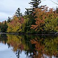Reflection On The Raquette River by Thomas Phillips