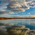 Reflections At Cherry Creek by Lynn Bauer