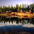 Reflections At Grace Lake by Joyce Dickens