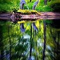 Reflections by Dave Wangsness