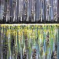 Reflections IIi by Dan Earle