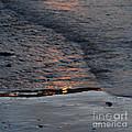 Reflections IIi  by Paul Davenport