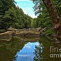 Reflections In Slippery Rock Creek by Adam Jewell