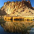Reflections In The Crooked River by Adam Jewell
