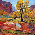 Reflections In The Wash by Erin Hanson