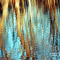 Reflections In Water by Kathleen Struckle