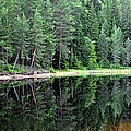 Reflections In Wtare by Stefan Pettersson