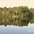 Reflections by Jim Hennessey
